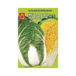 가을배추씨앗 2000립 휘모리배추 김장배추 배추씨앗