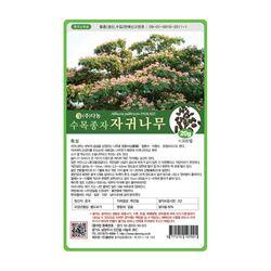 수목종자 자귀나무씨앗 20g 자귀나무종자 산림 조경