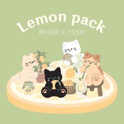 [1300k 단독]레몬팩