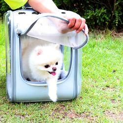 로마팸 애견 강아지 고양이 가방 이동가방 켄넬 투명우주백팩