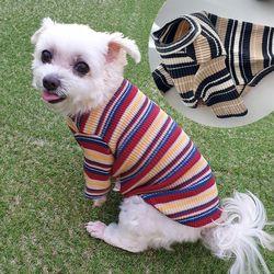감성골지 강아지 티셔츠 알록달록 색이 고운 스트라이프티