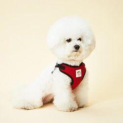 강아지하네스 이지핏 베이직하네스 M 강아지가슴줄