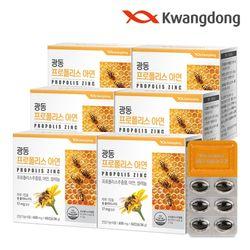 광동 프로폴리스 아연 60캡슐 6박스(12개월분) 플라보노이드