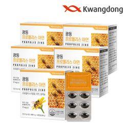 광동 프로폴리스 아연 60캡슐 5박스(10개월분) 플라보노이드