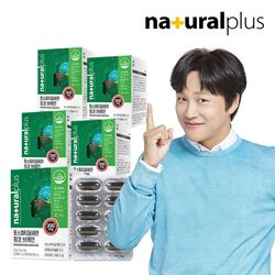 내츄럴플러스 포스파티딜세린 징코 브레인 60캡슐 5박스