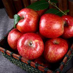 정품 가을 햇 빨간 사과 실중량 4kg(중과 18과내외)