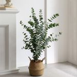120cm 리얼한 유칼립투스나무 해초바구니세트 인테리어 조화