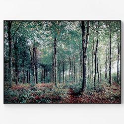 중형 메탈 자연 포스터 자작나무 숲 액자