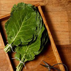 친환경 유기농 케일 쌈용 1kg