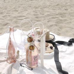 와인칠링백 와인잔 세트