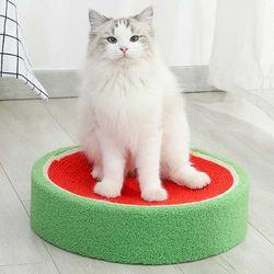 스트레스 해소 고양이 수박 스크래쳐CH1781814