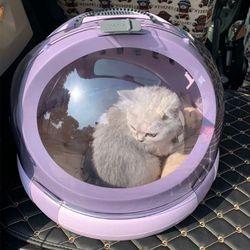 아이니샵 우주캡슐 반려동물 이동가방