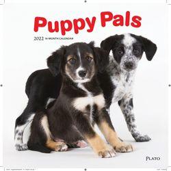Puppy Pals (BT 미국캘린더)