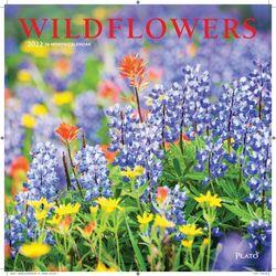 Wildflowers (BT 미국캘린더)
