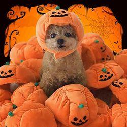할로윈 소형 강아지 고양이 조절가능 호박 코스튬 모자