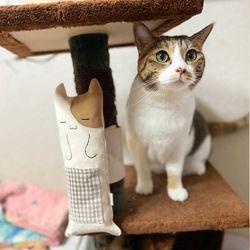 개달당 궁예 캣타워 기둥냥이 고양이 바스락 캣닢장난감
