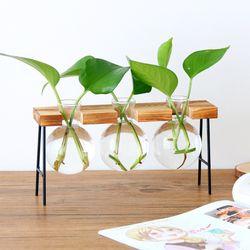 원목 수경재배 유리 화병 3단