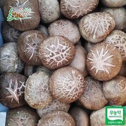 문경푸른솔 송정섭 농부 무농약 생표고버섯 1kg(보통)