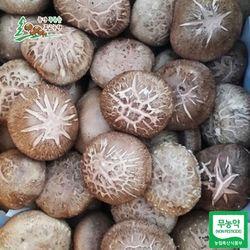 문경푸른솔 송정섭 농부 무농약 생표고버섯 1kg(중품)