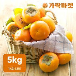 [가락마켓] 고당도 햇단감 5kg 특대(16과 내외)