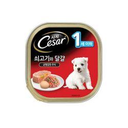 시저캔-퍼피용(1년이하)캔간식1개