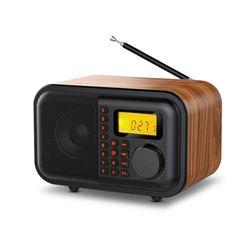 얼리봇 LHV780 휴대용 블루투스 스피커 FM 라디오