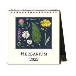 2022 데스크캘린더 Herbarium