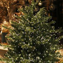 크리스마스 조명 몰디브 지네 전구 200구 6m